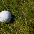 Golf Ball in Rough — Foto de Stock