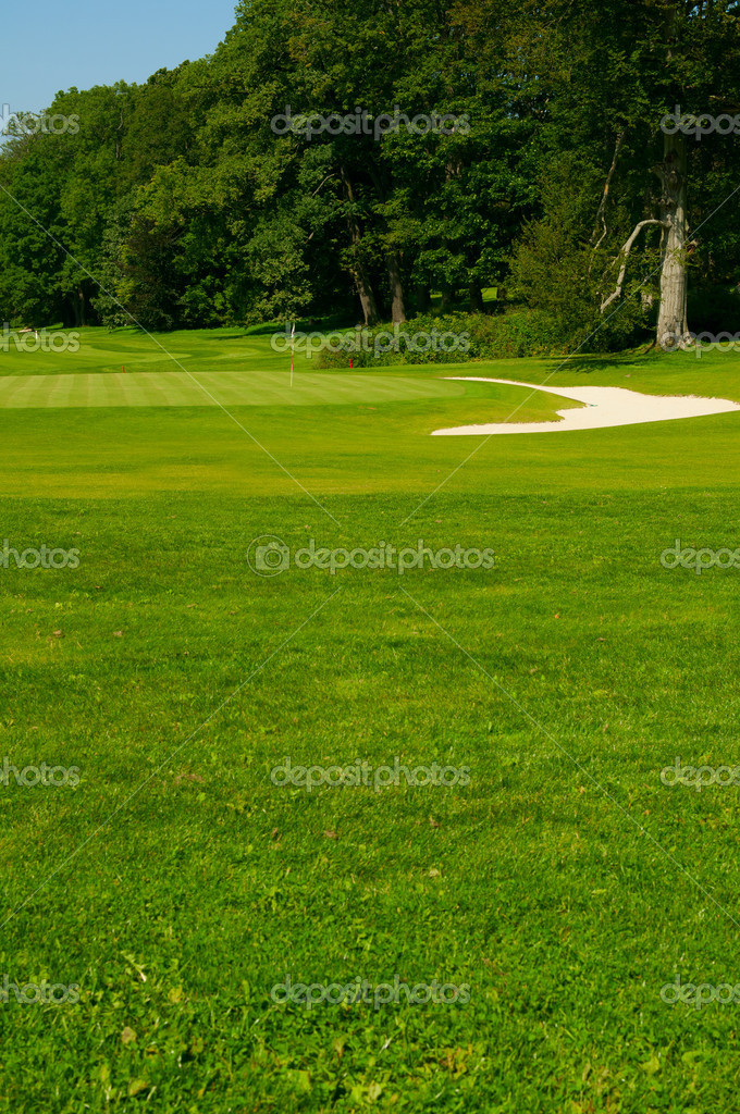 Golf Course in Forest - Golf Green With Flag and Bunker — Stock Photo #6550441
