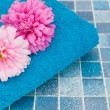 Flowers in Bathroom — Stock Photo #6688319