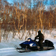 Snowmobile — Stock Photo #5499805