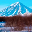 Stock Photo: Volcano covered with snow