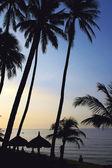 Landscape on beach at sunrise — Stock Photo