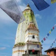 Landmark of the famous monkey-temple in Nepal - Foto Stock
