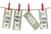 One hundred and one dollars dry on the rope. — Stock Photo