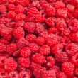 Rasberry background — Stock Photo