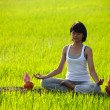 Royalty-Free Stock Photo: Girl practicing yoga,sitting with lotus flower in paddy field