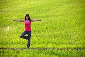 Girl practicing yoga,standing in paddy field — Stock Photo