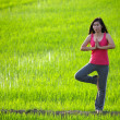 Girl practicing yoga,standing with paddy field background — Stockfoto