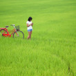 Beautiful girl plaing a phone with bike in paddy field — Stock Photo