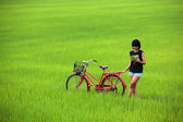 Beautiful girl reading a book with bike in paddy field — Stock Photo