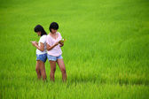 Two young sisters reading a book in paddy field — Stock Photo