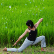 Girl practicing yoga in paddy field — Stock Photo