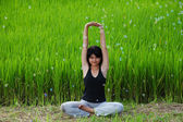 Girl practicing yoga in paddy field — Foto Stock
