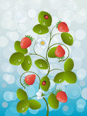 Floral bakgrund med en jordgubbe — Stockvektor