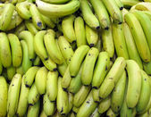 Bananas Bunches — Stock Photo