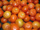 完熟トマト — ストック写真
