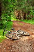 Bicycle tourism concept — Foto de Stock