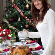 Woman christmas dinner roasted turkey — Stock Photo