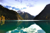 Landscape of forest and lake in China Jiuzhaigou — Stock Photo