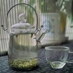 Teapot and tea cup — Stock Photo