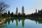 Çinli Budist pagodadan — Stok fotoğraf