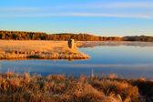 Wschód krajobraz jeziora w łąki — Zdjęcie stockowe