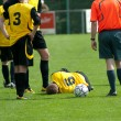 Stock Photo: Soccer injury