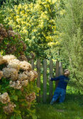 Little blond boy playing in a garden — Stock Photo