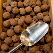 Truffle with chocolate - Stock Photo