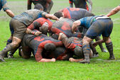 Rugby match — Stock Photo