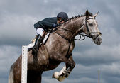 Detail of horseman with horse at jumping — Stock Photo
