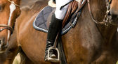 Detail of horseman with horse — Stock Photo