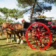 A retro cart with horse and flowers at breton festival — Stock Photo