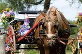 Une charrette rétro avec cheval et fleurs au festival breton — Photo