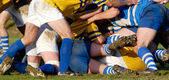 Rugby sport competition — Stock Photo