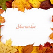 Colorful frame of fallen autumn leaves with text message — Stock Photo