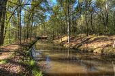 Creek Scene — Stockfoto