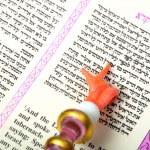 Torah — Stock Photo