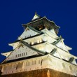 Stock Photo: Osaka Castle