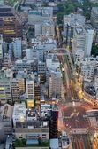 东京鸟瞰图 — 图库照片