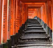 Santuário de fushimi inari — Fotografia Stock
