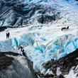Franz Josef Glacier — Stock Photo #5489799