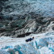 Franz Josef Glacier — Stock Photo #5501438