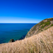 Ocean view in New Zealand — Stock Photo