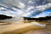 Geothermal landscape - New Zealand — Stock Photo