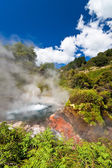 Steaming geothermal pool in New Zealand — Stock Photo