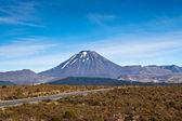 Mount Ngauruhoe — Stock Photo