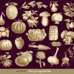 Vector set of vegetables — Stock Vector #6276766