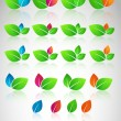 Vector set of color leaves. - Stock Vector