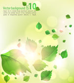 Nice summer nature background — Stock Vector